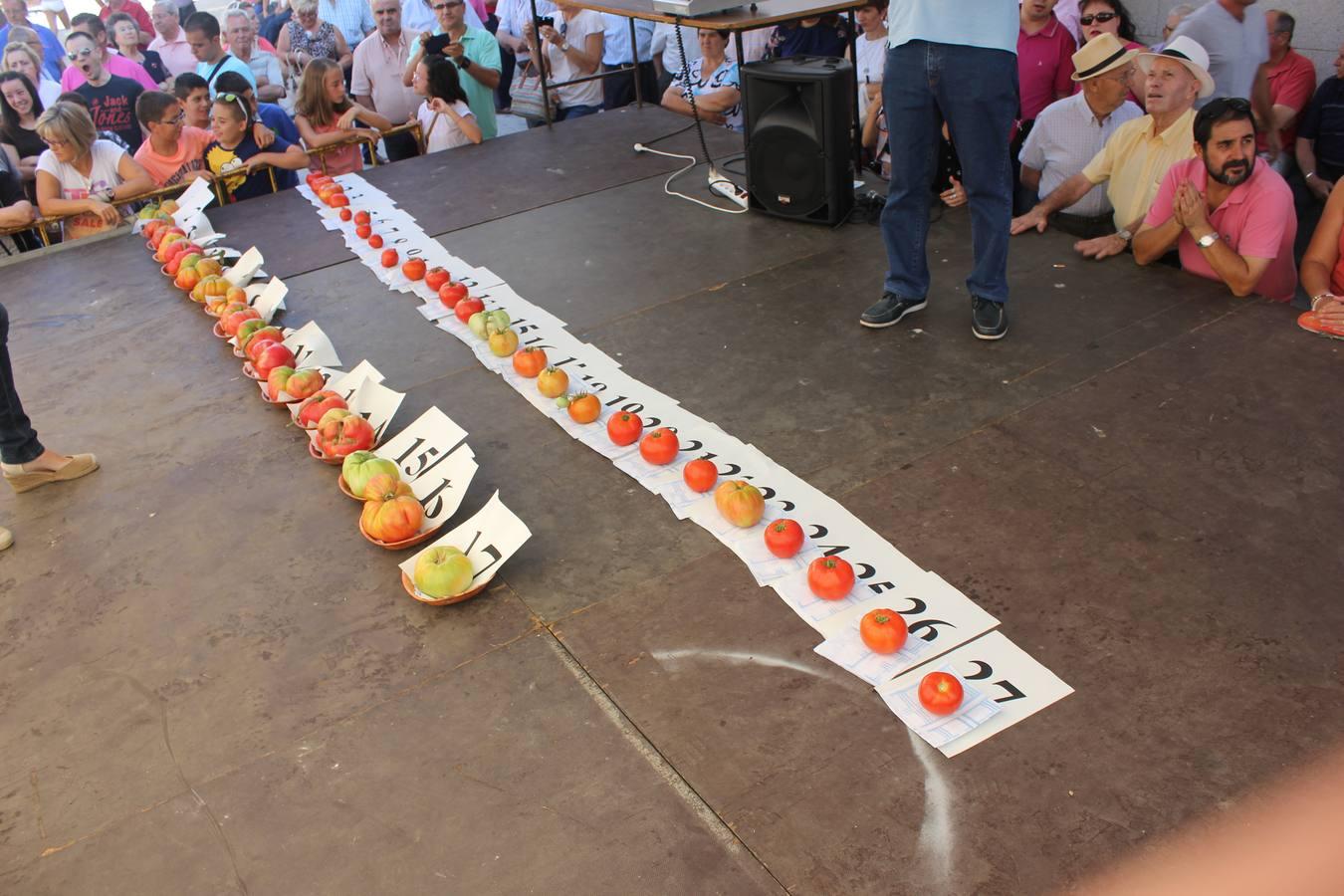 Concurso Tomate